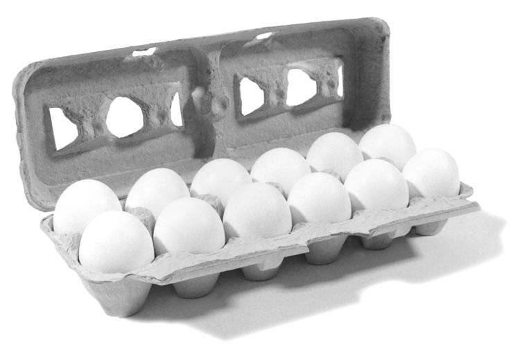 picture relating to Egg Coupons Printable identified as BOGO Eggs Printable Coupon At present Simply - Hunt4Freebies