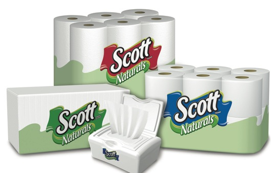 image regarding Scott Printable Coupons named Scott Paper Products and solutions Printable Coupon codes - Hunt4Freebies