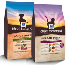 Ideal Balance Dog Food >> Free Bag Of Hill S Ideal Balance Cat Or Dog Food After