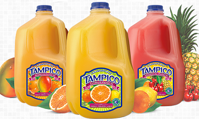 Tampico Fruit Punch $1 off Two or $1.50 off Two Gallons or More of Tampico Fruit Punch Coupon