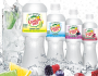 Canada Dry Sparkling Water