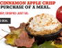 FREE Cinnamon Apple Crisp