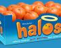 Wonderful-Halos