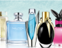 Coty Fragrance