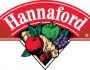 Hannaford-1